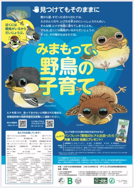 雛を拾わないで 日本野鳥の会