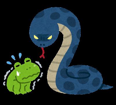 蛇の夢 追いかけられる